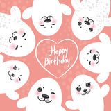 Happy birthday card design Funny white fur seal. Pups, cute winking seals with pink cheeks and big eyes. Kawaii albino animals on pink background. Vector Royalty Free Stock Images