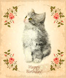 Happy birthday card with fluffy kitten. Royalty Free Stock Photography