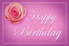 Happy Birthday Card with a single pink rose on purple pastel background Royalty Free Stock Photography