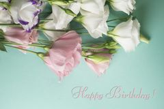 Happy birthday card. White eustoma flowers on a light turquoise background. Lisianthus, tulip gentian bouquet stock photography
