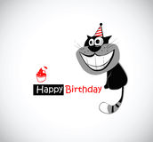 Happy Birthday Cat Royalty Free Stock Images