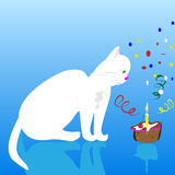 Happy birthday cat Royalty Free Stock Photos