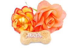Happy Birthday dog biscuit Stock Image