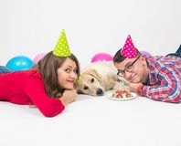 Happy birthday dog with friendly family over white stock image