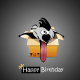 Happy Birthday dog gift Royalty Free Stock Image