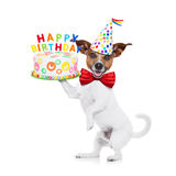 Happy birthday dog. Jack russell dog holding a happy birthday cake with candels , red tie and party hat on , isolated on white background Stock Images