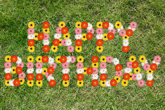 Happy Birthday with flowers flower nature meadow. Grass royalty free stock photography