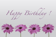 Happy Birthday - Flowers  on white Royalty Free Stock Image