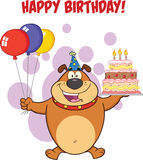 Happy Birthday Greeting With Brown Bulldog Holding Up A Birthday Cake With Candles Stock Photo