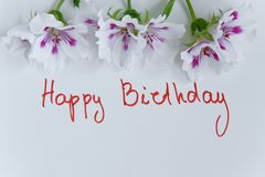 Happy birthday greeting card with fresh flowers on white background. Space for text royalty free stock image