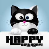 Happy birthday greeting card held by a cute black and white cat Stock Photos