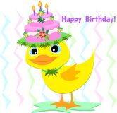 Happy Birthday Hat on a Duck Stock Photography