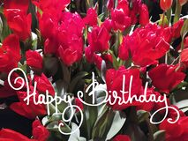 Happy Birthday horizontal greeting card. Wine-colored tulips and hand-lettered greeting phrase