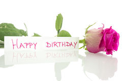 Happy birthday message. Leaning on beautiful pink rose. Over white background royalty free stock photography