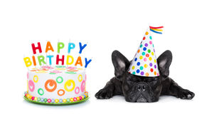 Happy birthday sleeping dog. French bulldog with  happy birthday cake and candles ,a  party hat  ,eyes closed , isolated on white background Royalty Free Stock Images