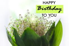 Happy Birthday to You text sign. Blooming Lilies of the valley green leaves. Blurred bokeh lights flowers background