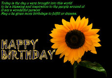 Happy Birthday. Wish your dear ones Happy Birthday with this beautiful photo of fresh flower royalty free stock photography