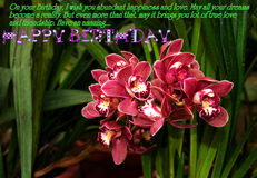 Happy Birthday. Wish your dear ones Happy Birthday with this beautiful photo of fresh flowers stock image