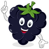 Happy Blackberry or Mulberry Character Royalty Free Stock Image