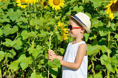 Happy blond boy in sun glasses and hat with sunflower on field outdoors. Kid portrait. Summer countryside agriculture Stock Images