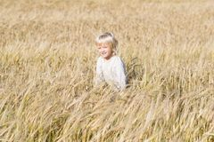 Happy blond child has fun in the rye field. Ripe ears of autumn harvest ready to crop royalty free stock images