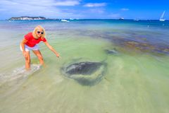 Woman with Eagle Ray. Happy blonde woman pointing at big Australian Eagle Ray close to shore in Hamelin Bay, Margaret River Region, Western Australia. Female Royalty Free Stock Photography