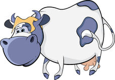 Happy blue cow. Cartoon Stock Photography