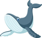 Happy blue whale cartoon Stock Image