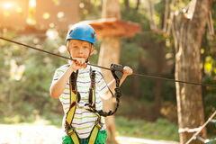 Happy boy at adventure and climbing ropeway activity in forest.  Stock Photo