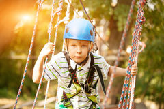 Happy boy at adventure and climbing ropeway activity in forest.  Royalty Free Stock Image