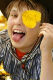 Happy boy in the autumn fall Stock Images