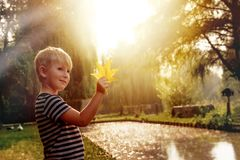 Happy boy in autumn park. Happy boy at sunny autumn day in the park with yellow leaves stock images