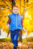 Happy boy in the autumn park Stock Photo