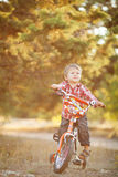 Happy boy on a bicycle in a summer park Stock Image