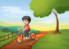 A happy boy biking Stock Image