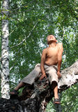 Happy boy on birch tree Stock Photos