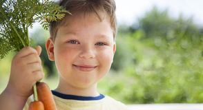 Happy boy biting the carrot, A child with a vegetable. Kid eating fresh carrots.  royalty free stock photography