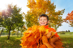 Happy boy with bunch of bright orange leaves Royalty Free Stock Photo