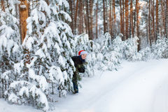 Happy boy in a cap of Santa Claus in the winter forest. Stock Photography