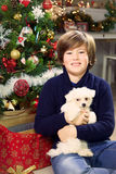 Boy holding little puppy dog smiling in front of Christmas tree Stock Images