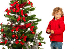 Happy boy with Christmas tree Royalty Free Stock Images