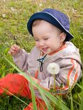 Happy boy on dandelion meadow. Happy laughing smiling  kid with two front teeth sitting on the dandelion flowers meadow Royalty Free Stock Images