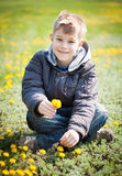 Happy boy with dandelions in a green park. summer Royalty Free Stock Image