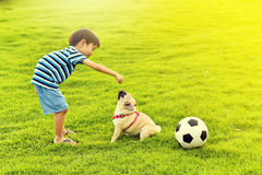 Happy boy with dog. Happy Asian boy playing with his dog in garden Stock Image