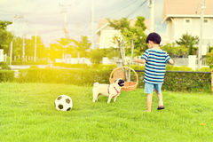 Happy boy with dog Stock Images