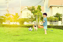 Happy boy with dog Stock Image