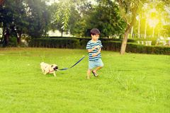 Happy boy with dog. Happy Asian boy playing with his dog in garden Royalty Free Stock Images