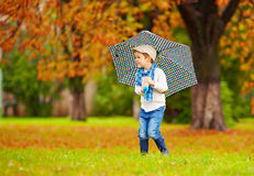 Happy boy enjoying an autumn rain in park Stock Photos