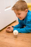 Happy boy on floor with pet chick Royalty Free Stock Photography