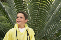 Happy Boy In Front Of Large Fern Stock Photo